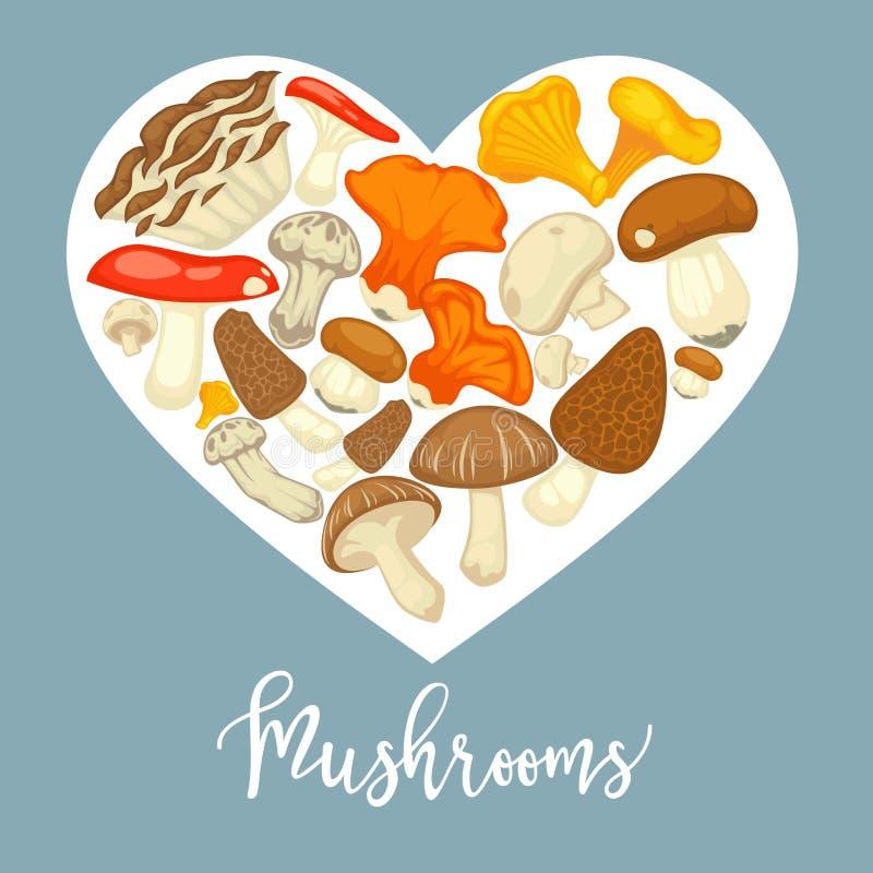Rozrasta się jadalnego grzybobranie plakat Wektorowy płaski szampinion, borowiki, lasu homar i chanterelle i my rozrastamy się royalty ilustracja
