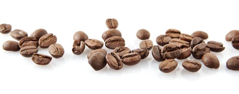 Rozrzucone kawowe fasole w linii na bielu zdjęcie royalty free