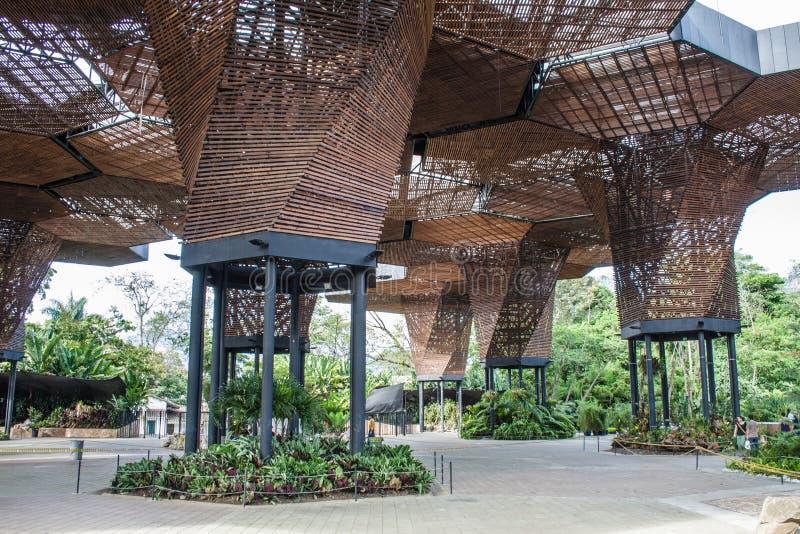 Rozsady w Medelin ogródzie botanicznym obrazy royalty free