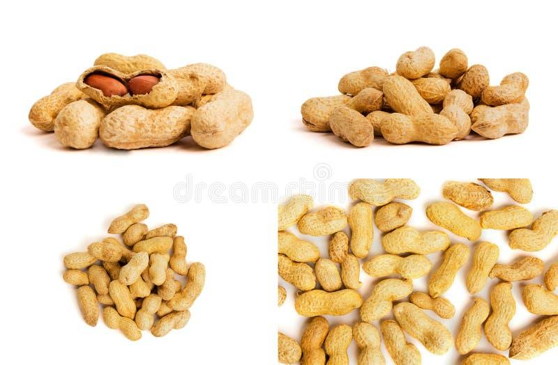 Rozsypisko arachidy jako tło Makro- widok uskorupeni arachidy zdjęcia royalty free