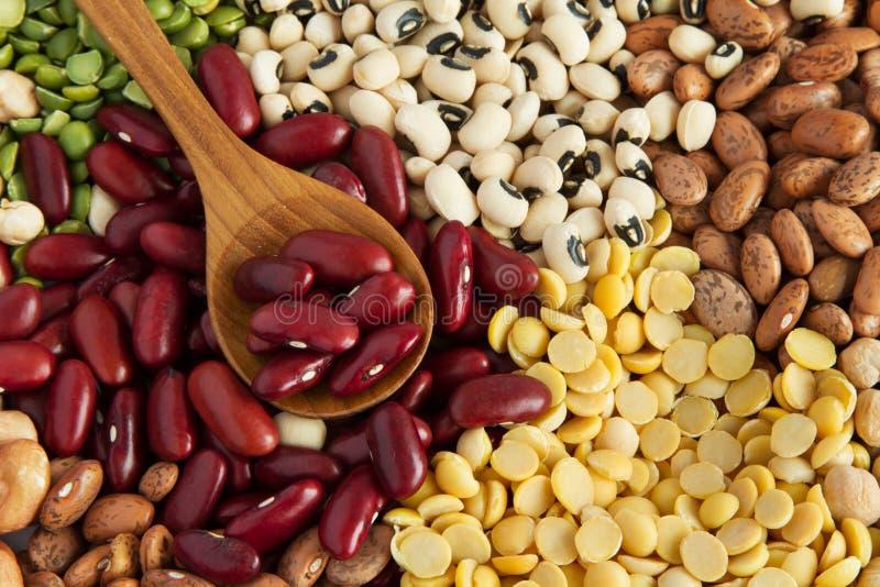 Rozsypisko Różnorodni Legumes obraz stock