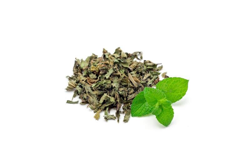 Rozsypisko sucha ziołowa nowa herbata i świeża miętówka na tle, odizolowywający zdjęcie royalty free