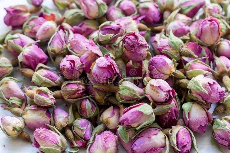 Rozsypisko wysuszeni różowi rosebuds dla herbaty lub aromatherapy Rosebud textured kwiatu tło obraz royalty free