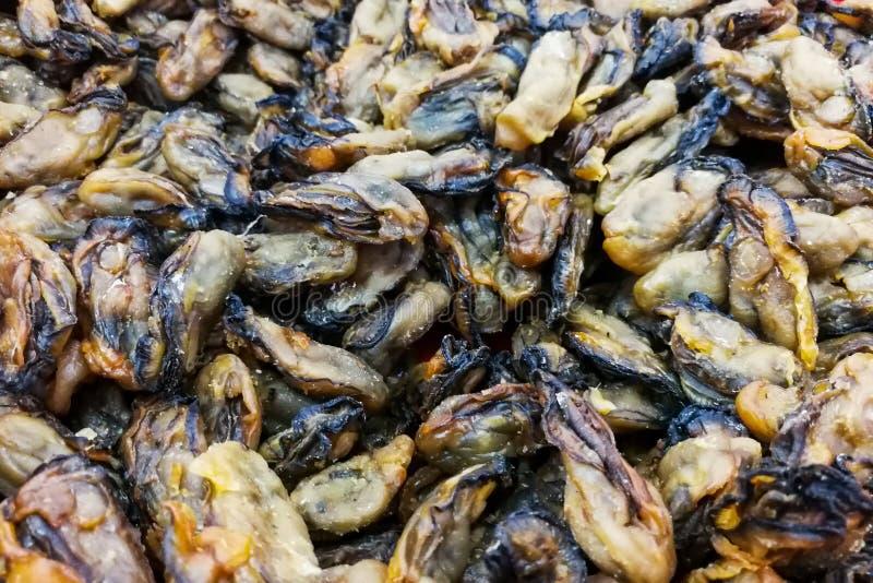 Rozsypisko wysuszone utrzymane ostrygi, popularny Chiński karmowy składnik zdjęcie royalty free