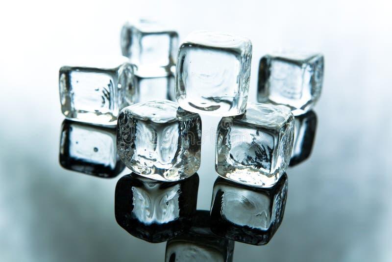 Roztapiające kostki lodu zdjęcie royalty free