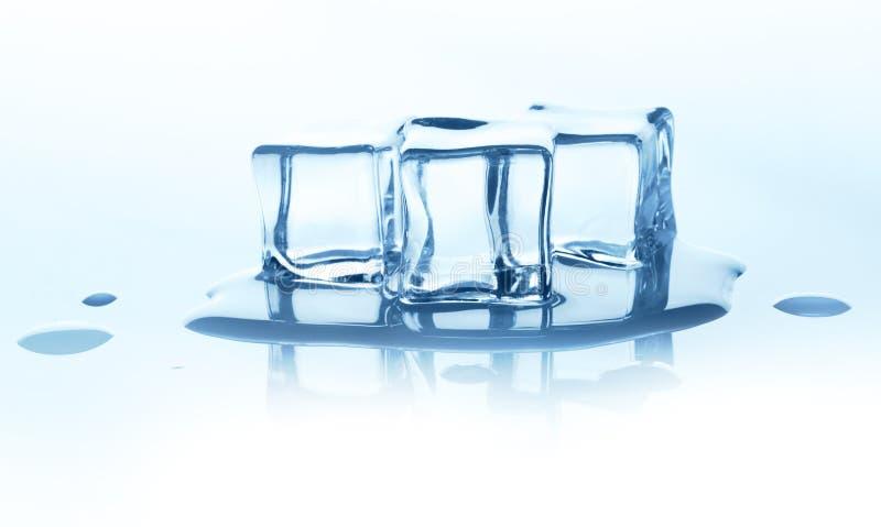 Roztapiające kostki lodu z odbiciem na bielu fotografia stock