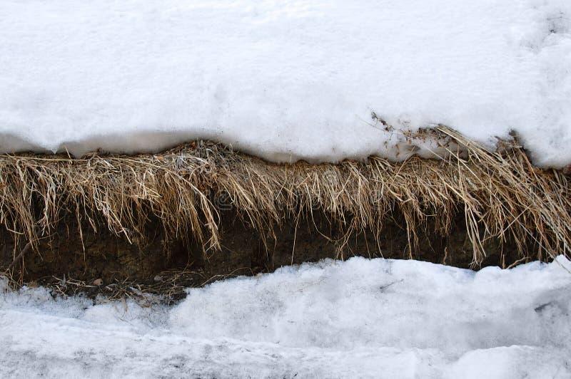 Roztapiający śnieg na falezie Sucha trawa na ziemi Wiosna obraz stock