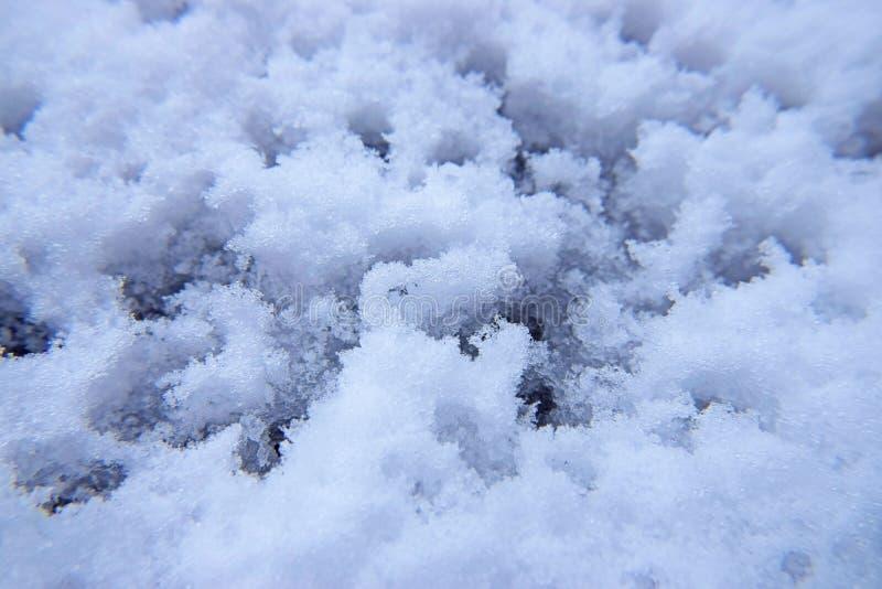 Roztapiający śnieg w wieczór z wodnymi kroplami zdjęcie stock