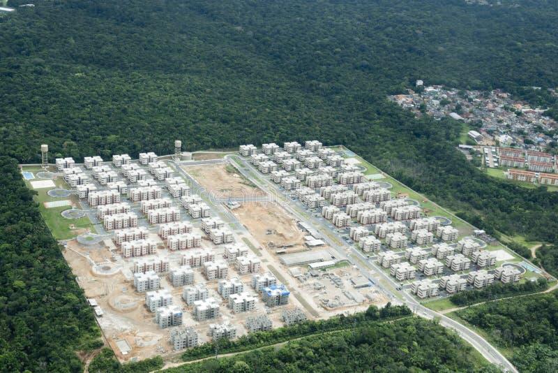 Rozwija teren w dżungli blisko Manaus, Brazylia obraz stock