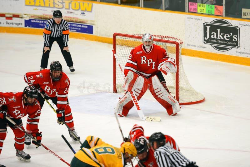 RPI Goalie #33 i NCAA-hockeylek royaltyfria foton