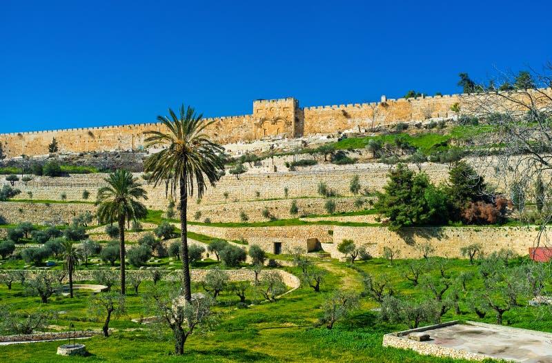 Rramparts Иерусалима стоковая фотография rf