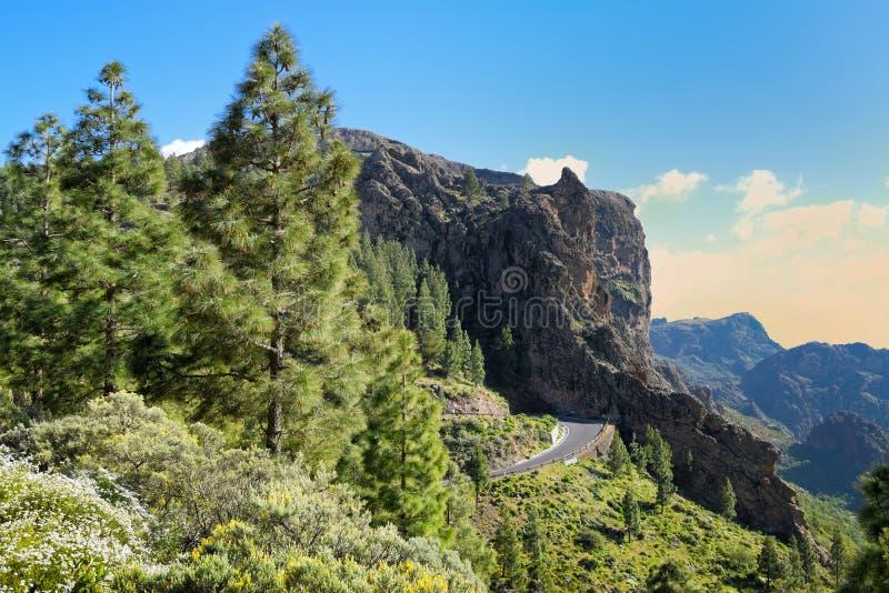 Rroad Twisty nas montanhas em Gran Canaria foto de stock royalty free