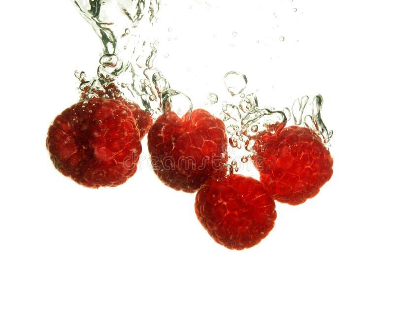 Rspberry splashing royalty free stock image