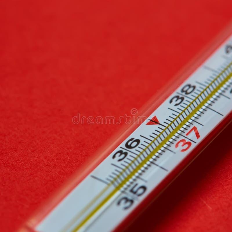 rtęć medyczny termometr zdjęcie royalty free
