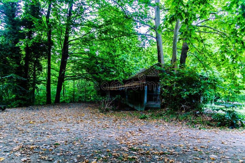 Ruína Desolated da construção na floresta do campo turco imagem de stock royalty free