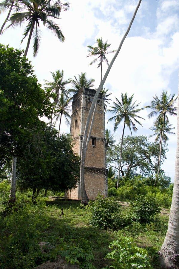 Ruína do depósito da guerra na selva de zanzibar foto de stock royalty free