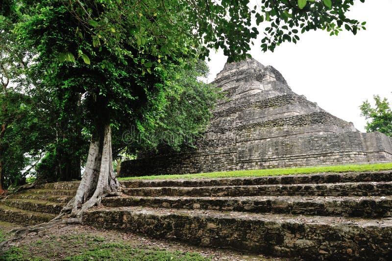 Ruína maia do itza de Chichen foto de stock