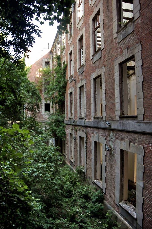 Ruínas cobertos de vegetação do palácio abandonado do sanatório de Smetskoy nomeado após Lenin, a Abkhásia Conceito cargo-apocalí imagens de stock royalty free