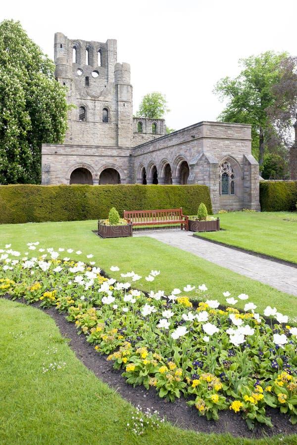 ruínas da abadia de Kelso, beiras escocesas, Escócia imagens de stock royalty free