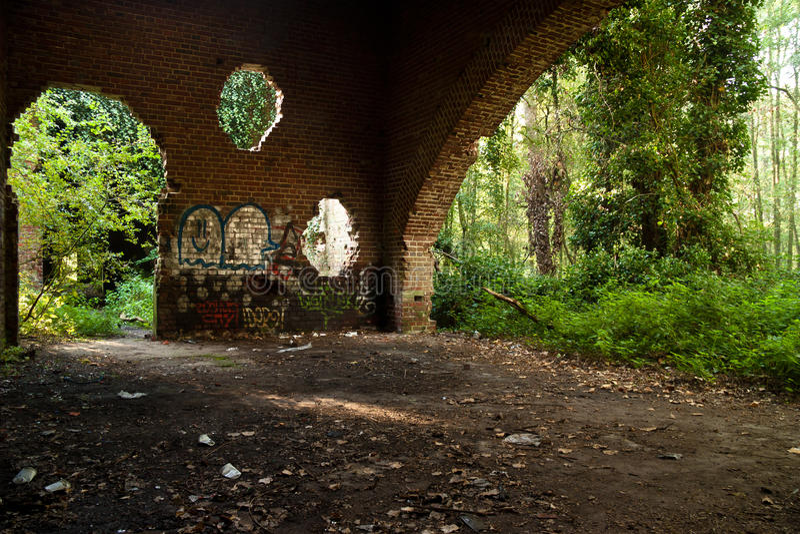 Ruínas da floresta fotografia de stock