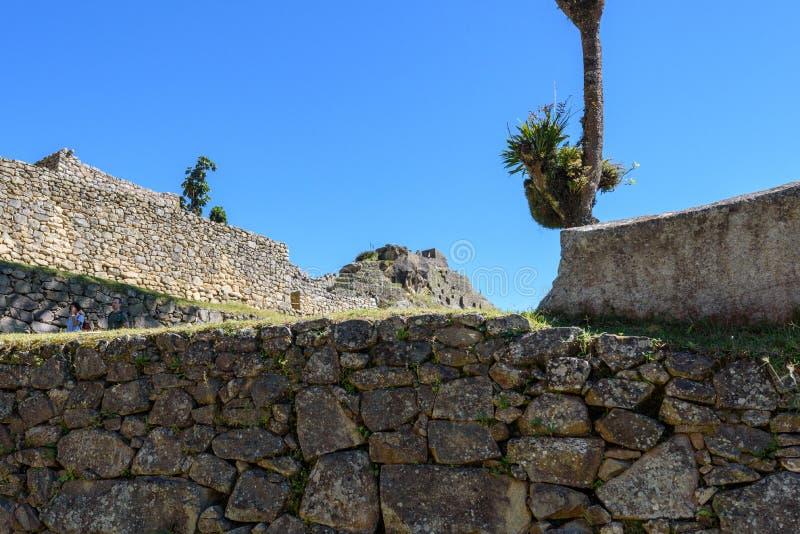 Ruínas das paredes de pedra em Machu Picchu fotos de stock