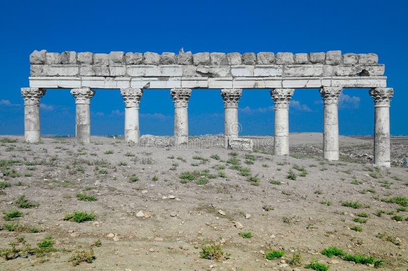 Ruínas de Apamea em Síria fotos de stock royalty free