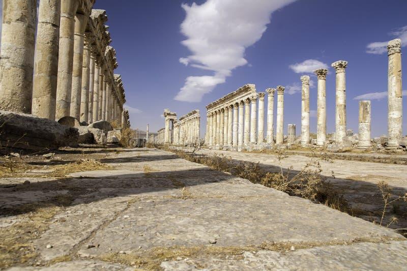 Ruínas de Apamea, Syria fotos de stock royalty free