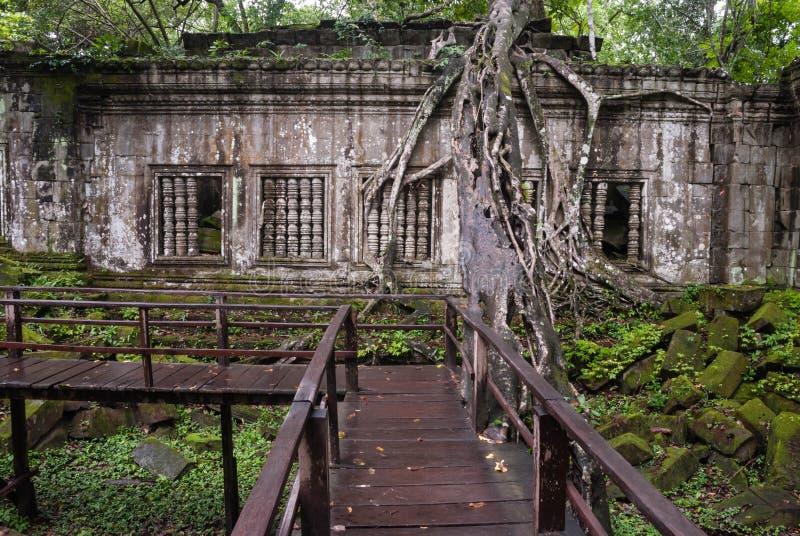 Ruínas de Beng Mealea, Angkor, Cambodia imagem de stock royalty free