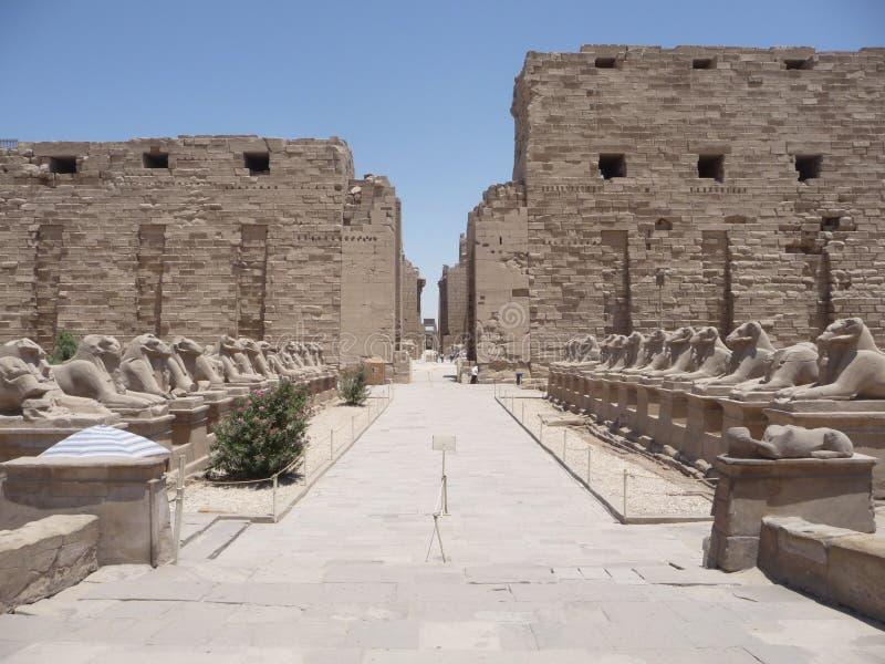 Ruínas de Karnak imagens de stock royalty free