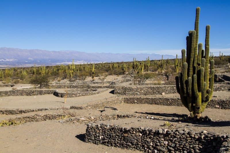 Ruínas de Quilmes imagens de stock