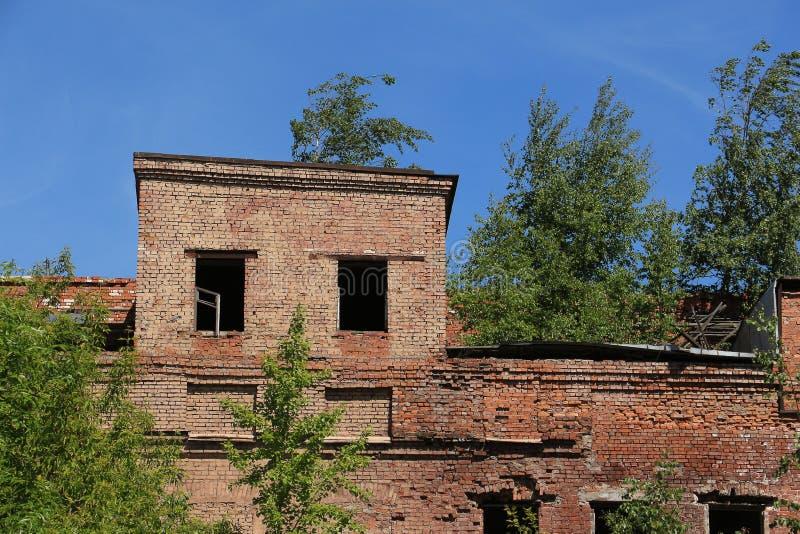 Ruínas de uma construção de tijolo, cobertos de vegetação com as árvores foto de stock royalty free