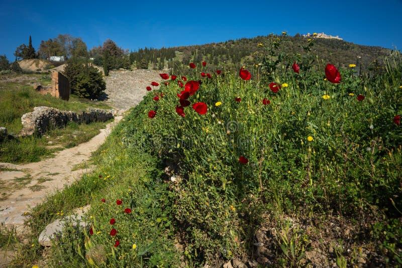 Ruínas do castelo medieval em Argos em Peloponnese em Grécia fotos de stock
