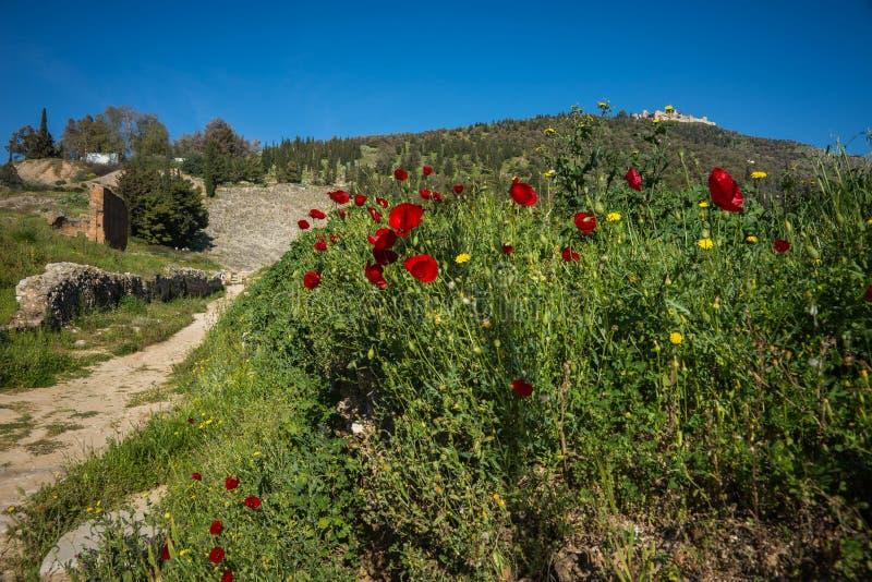 Ruínas do castelo medieval em Argos em Peloponnese em Grécia imagens de stock