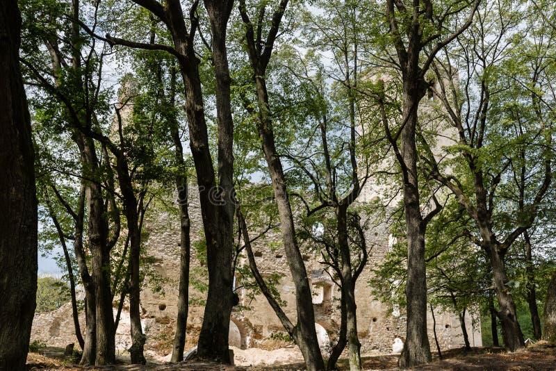 Ruínas do monastério Katarinka acima da vila de Dechtice, Slov imagens de stock
