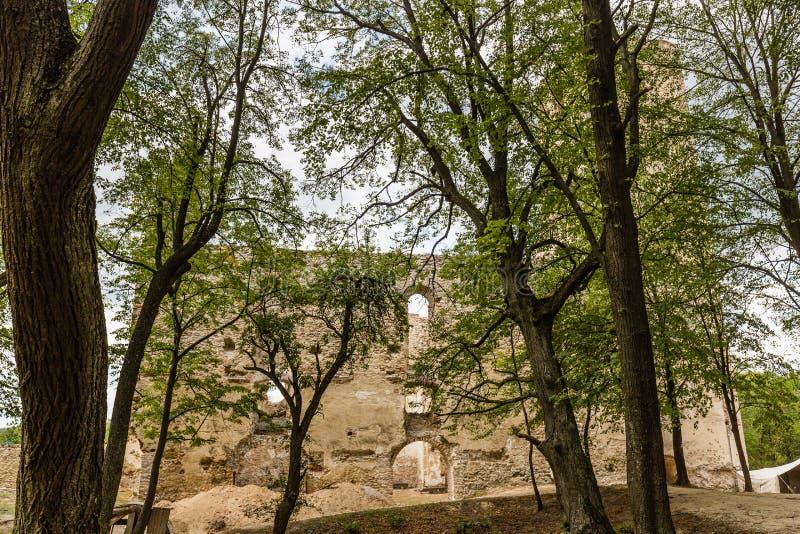 Ruínas do monastério Katarinka acima da vila de Dechtice, Slov fotos de stock