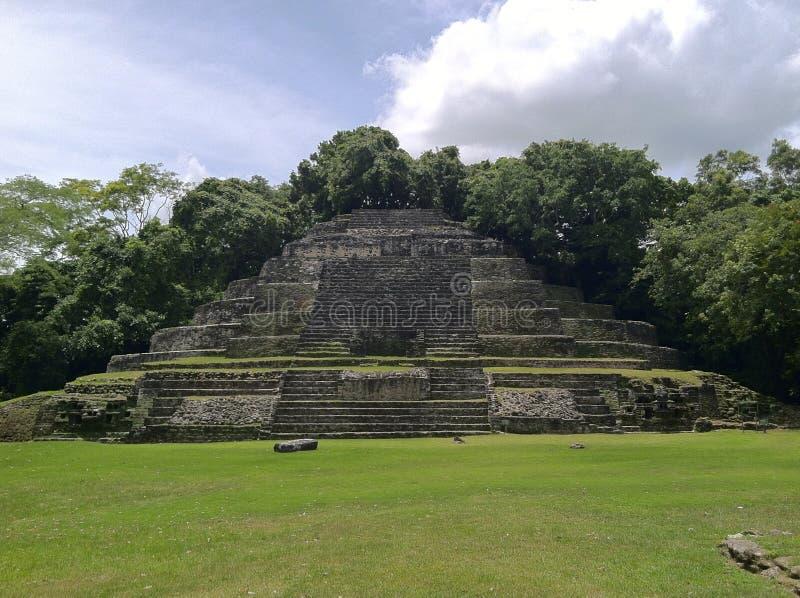 Ruínas do templo de Lamanai fotografia de stock