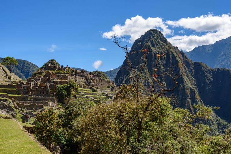 Ruínas em Machu Picchu, Peru fotos de stock royalty free