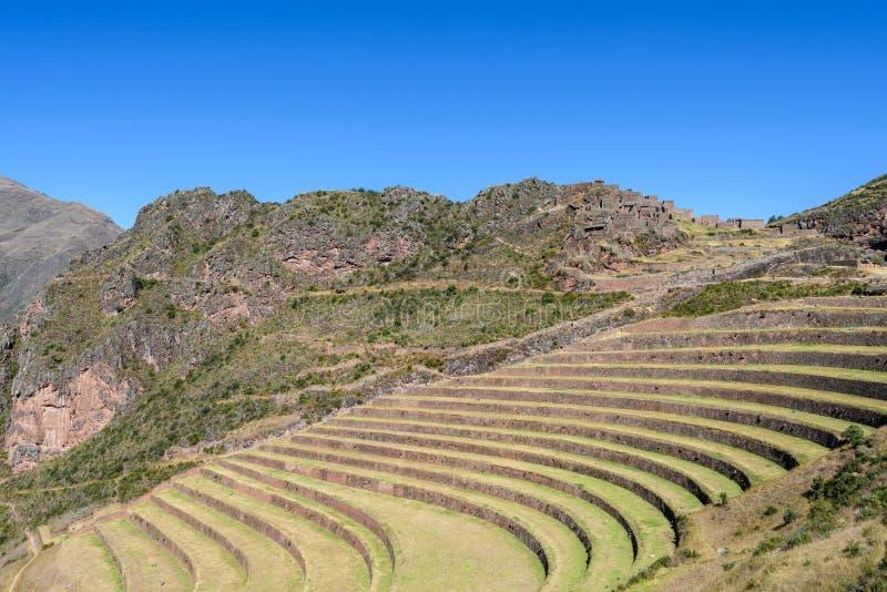 Ruínas Incan em Pisac, Peru imagens de stock royalty free