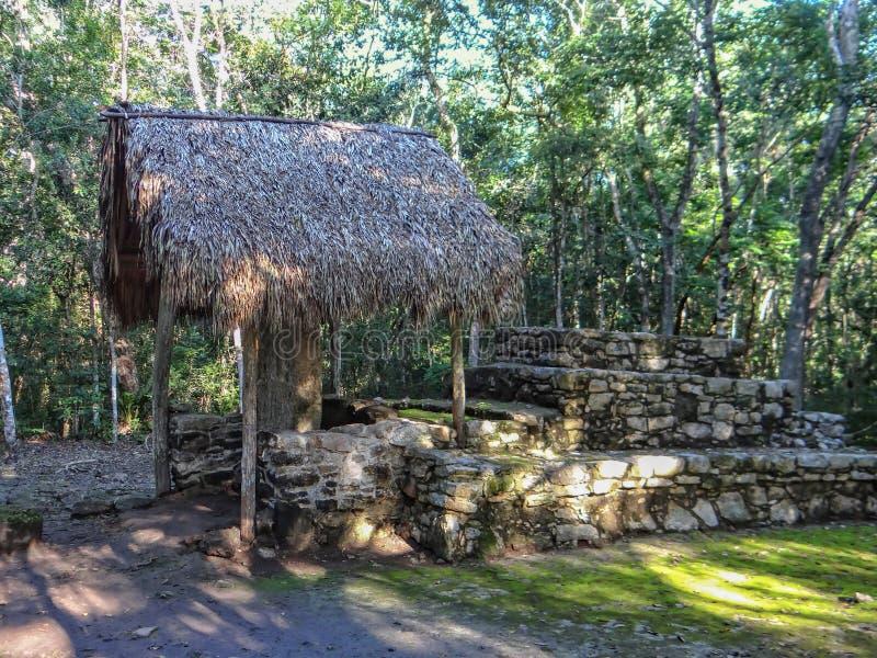 Ruínas maias antigas de Coba, península do Iucatão México fotos de stock royalty free