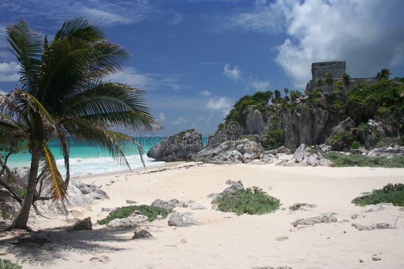 Ruínas maias na praia imagens de stock