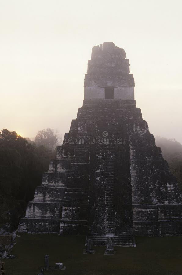 Ruínas maias Tikal, Guatemala fotos de stock royalty free
