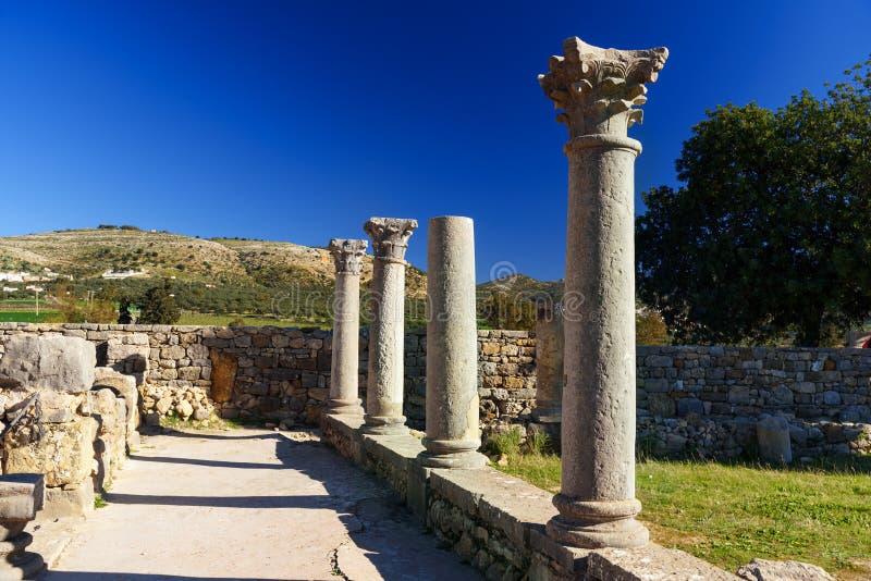 Ruínas romanas, cidade romana antiga de Volubilis marrocos fotografia de stock royalty free