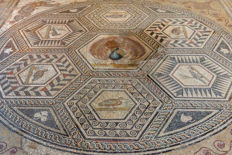 Ruínas romanas na cidade da Vaison-la-alface romana, Provence imagens de stock