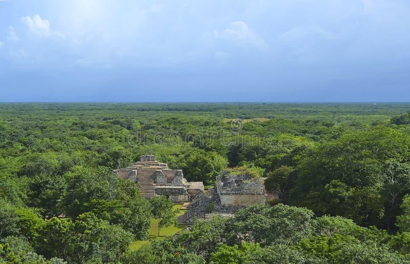 Ruïnes in het bos royalty-vrije stock afbeelding