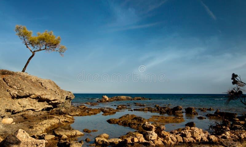 Ruïnes van antic haven Phaselis, Turkije stock fotografie
