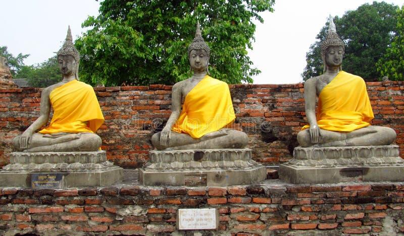 Ruïnes van de Ayutthaya de oude stad in Thailand, de standbeelden van Boedha stock fotografie