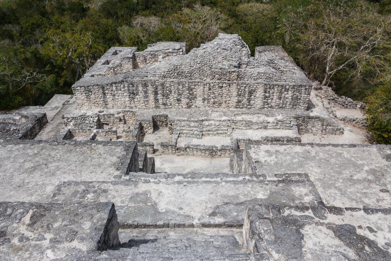 Ruïnes van de oude Mayan stad van Calakmul stock afbeeldingen