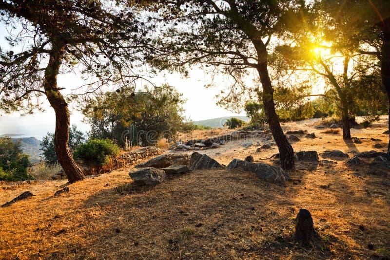 Ruïnes van het Heiligdom van Poseidon royalty-vrije stock afbeelding