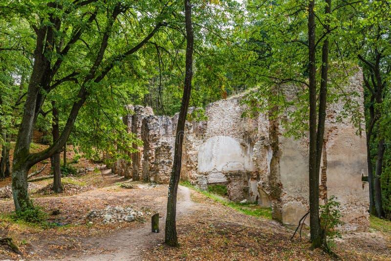 Ruïnes van Klooster Katarinka boven het dorp van Dechtice, Slov royalty-vrije stock afbeeldingen