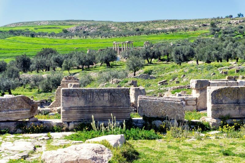 Ruïnes van Kolommen met Juno Temple in Dougga, Tunesië stock foto